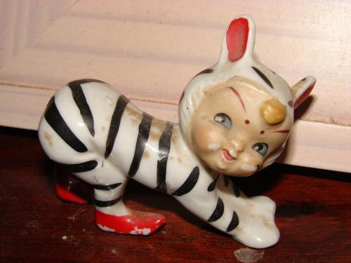 birthday zebra child