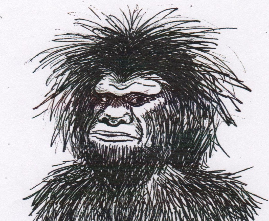 The Face Of Bigfoot Lindagodfreys Blog