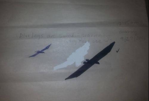 pterosaurMaggie2