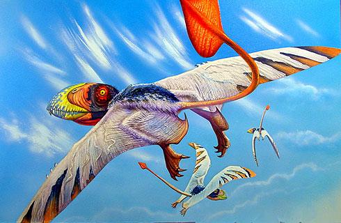 pteroDimorphodon3