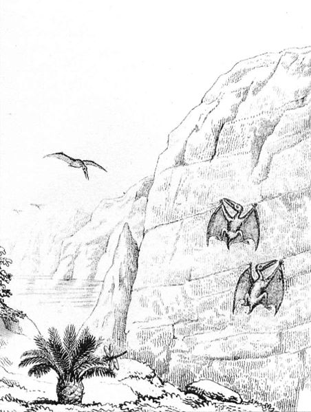 Pterosaurs_Buckland_1836