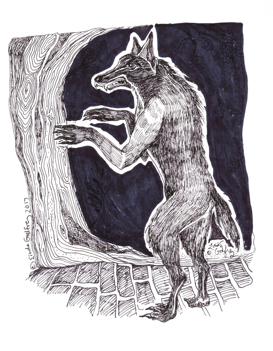 The Alleged Sewer Werewolves of Minot