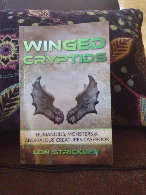 wingedcryptids